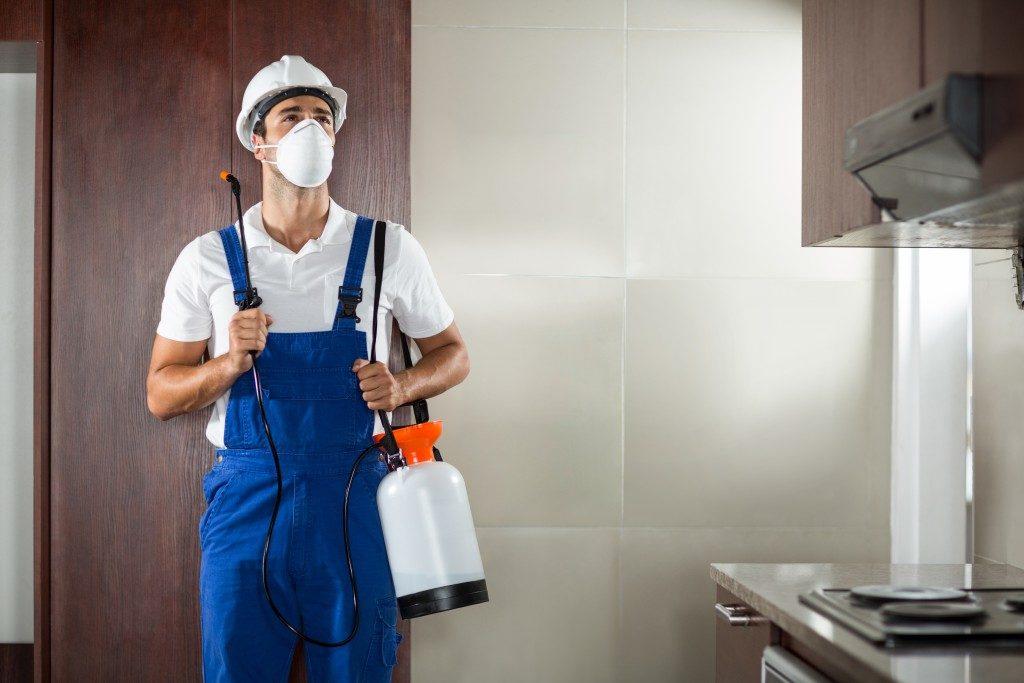 Pest worker spraying in the kitchen
